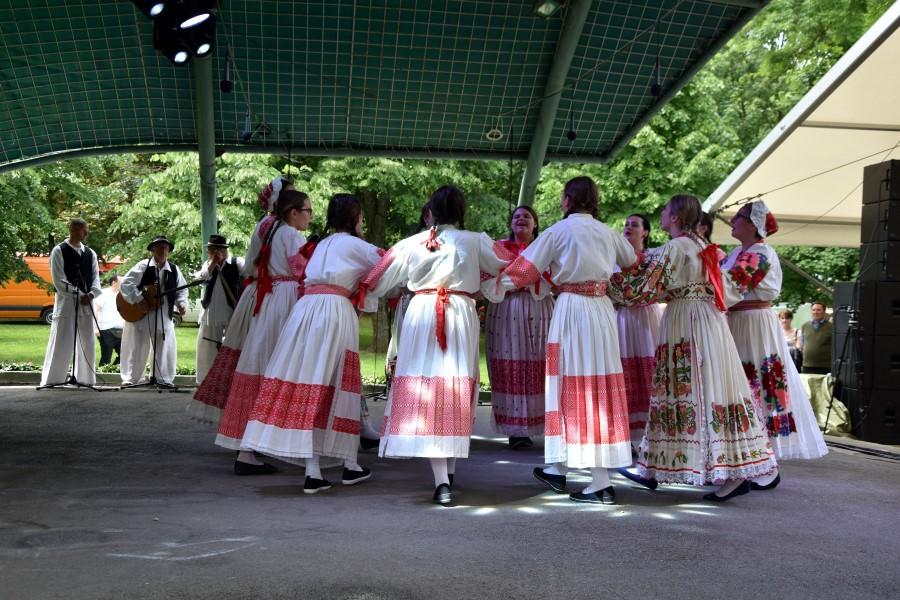 Smotra folklora (5) (Custom)