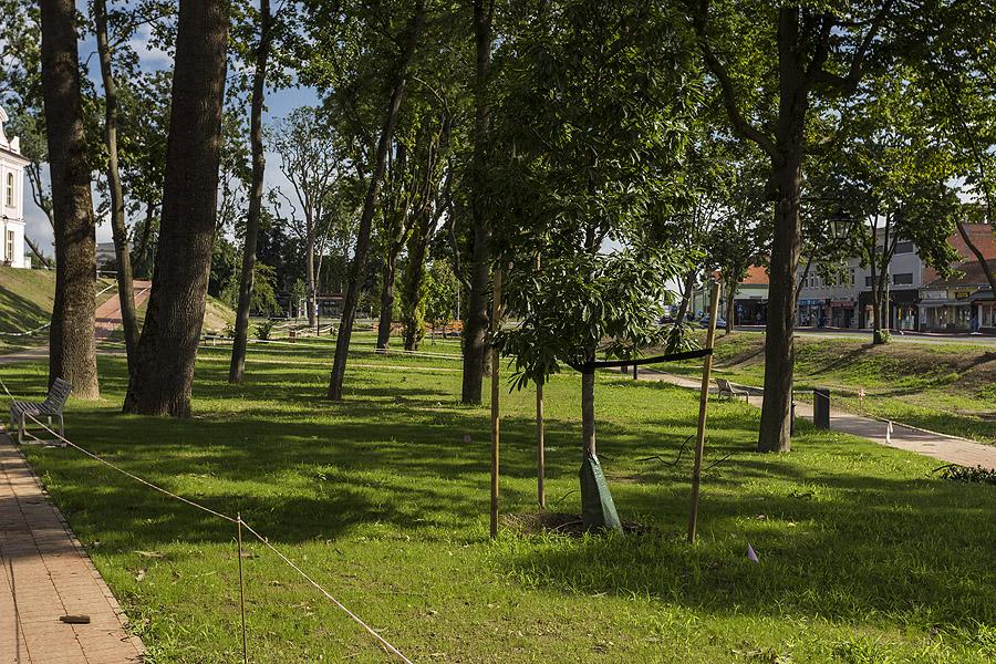 zeleni_park (4)