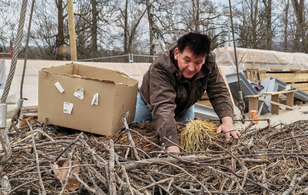 Profesor Danijel Stojkovic pomno je pripremio gnijezdo prije dizanja