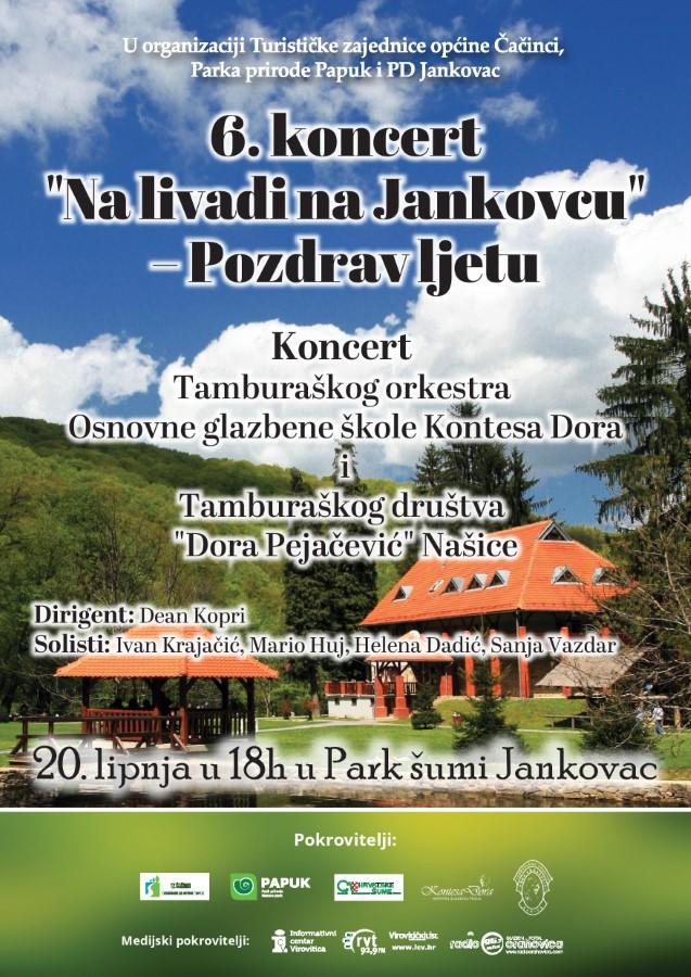 TZ CACINCI Plakat 6 koncert Na livadi na Jakovcu Preview page 001